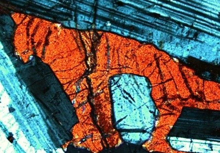 Pyroxene tiger in a thin section of gabbro